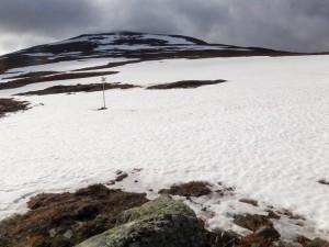Över ca 1 000 m.ö.h. fanns snölegorna